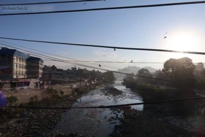 kathmandu3942
