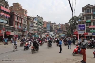 kathmandu4117
