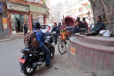 kathmandu4216